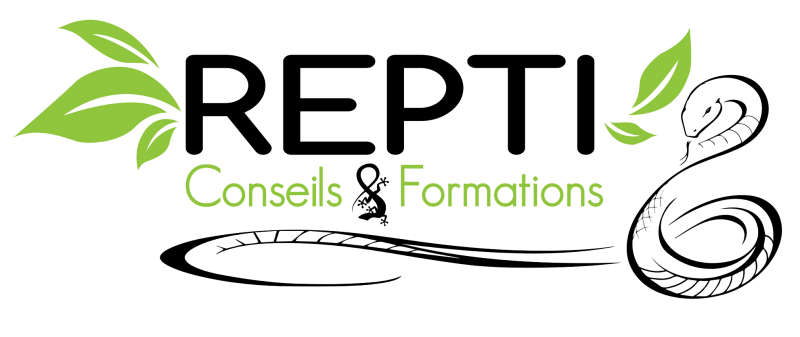 Repti Conseils et Formations