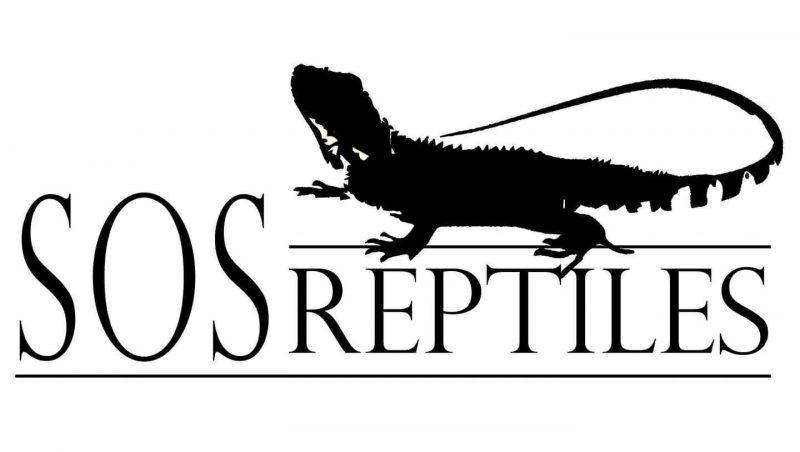 SOS Reptiles