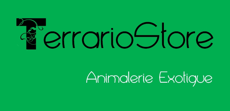Terrario Store